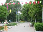 На должность руководителя Загородного парка назначен Сергей Королев